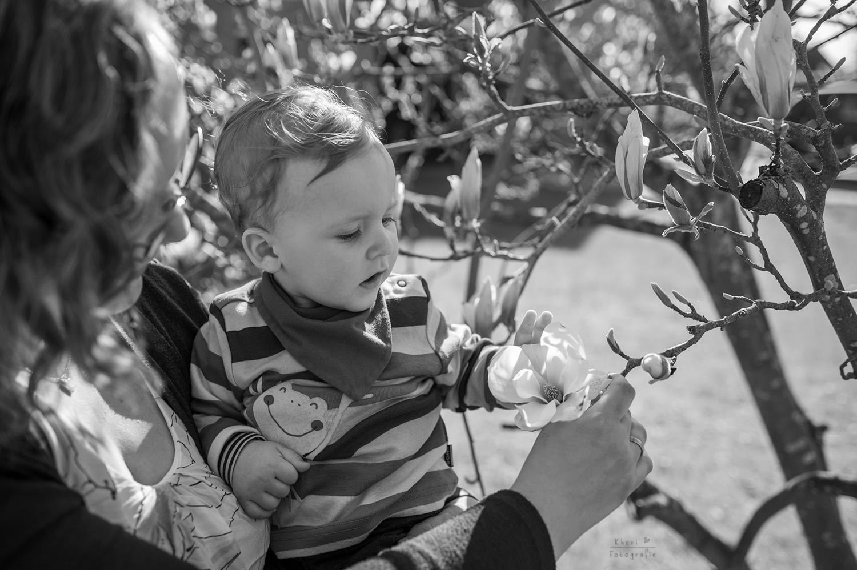 Familienshooting Nethen Magnolie Kind